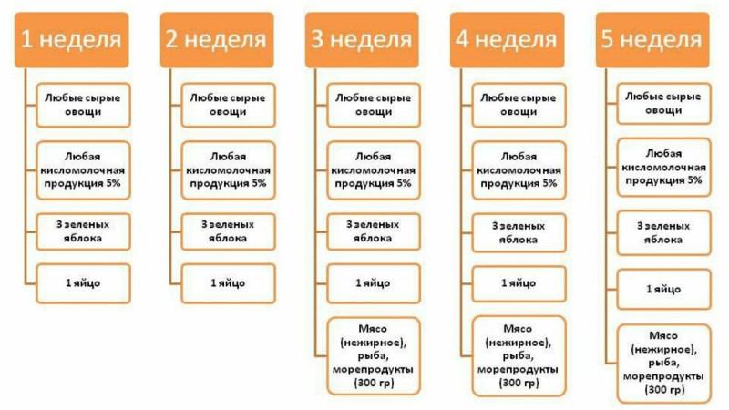 Схематичный план питания на диете Протасова