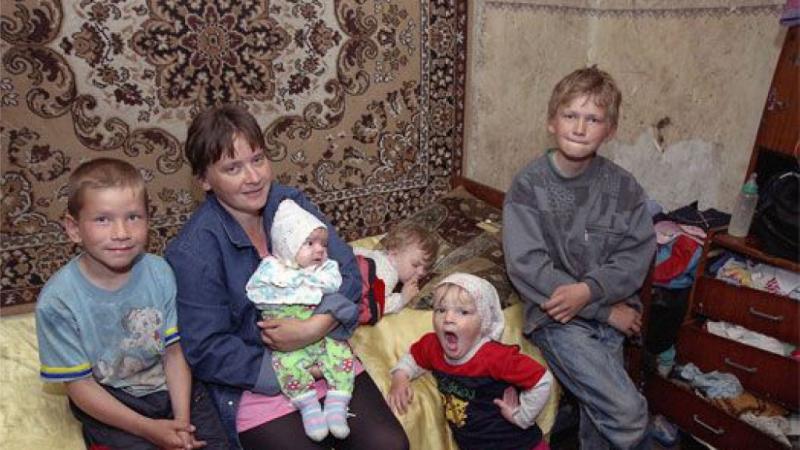 Фото из Яндекс.Картинки.