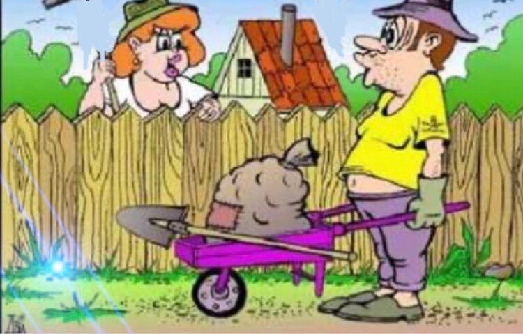 Анекдот: женщина просит мужчину показать дорогу к деревне, он отвечает: «Пойдём через лесок»!
