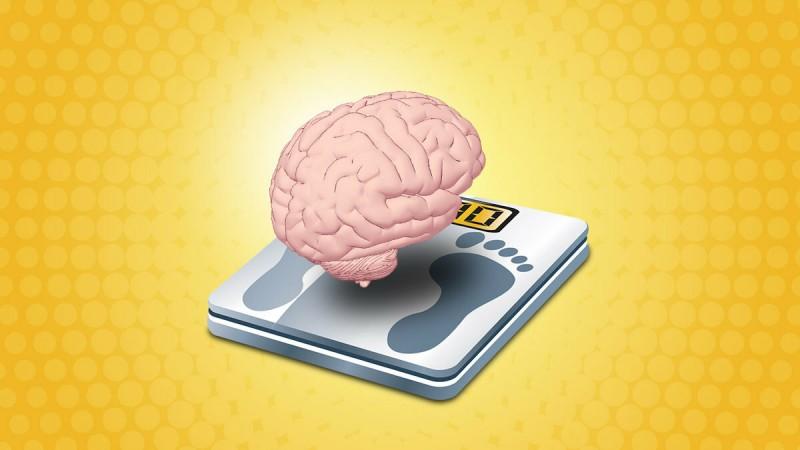Почему не удаётся похудеть?Причины и объяснение