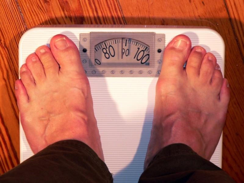 Фото для иллюстрации с сайта pxhere.com
