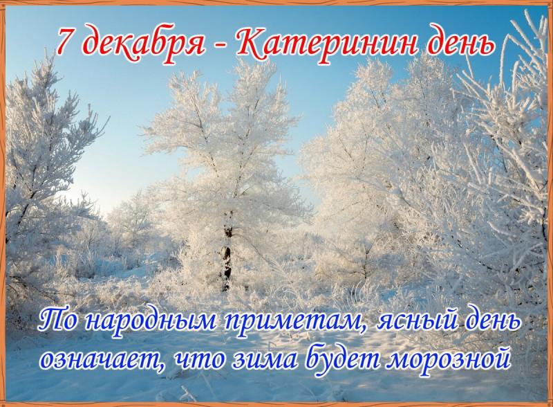 7 декабря - Катерина Санница. Женский день