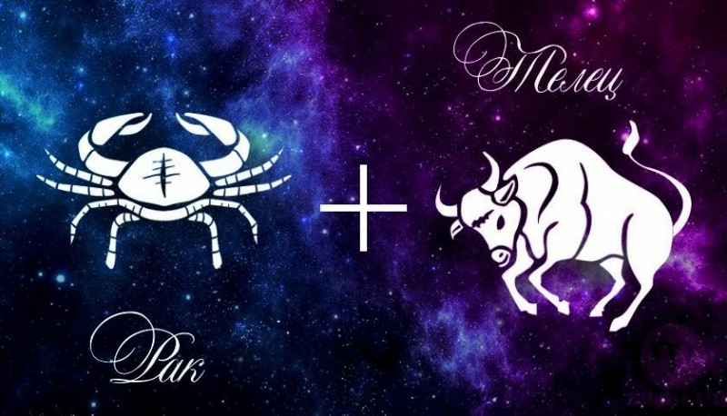 Рассказываю, насколько сильна астрологическая совместимость в отношениях, если Телец - женщина, а мужчина - Рак