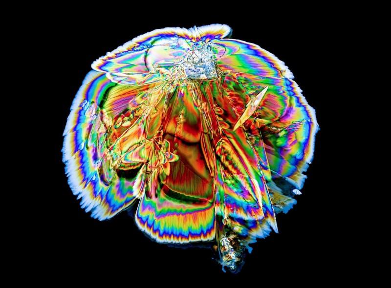 Кристалл лимонной кислоты под микроскопом