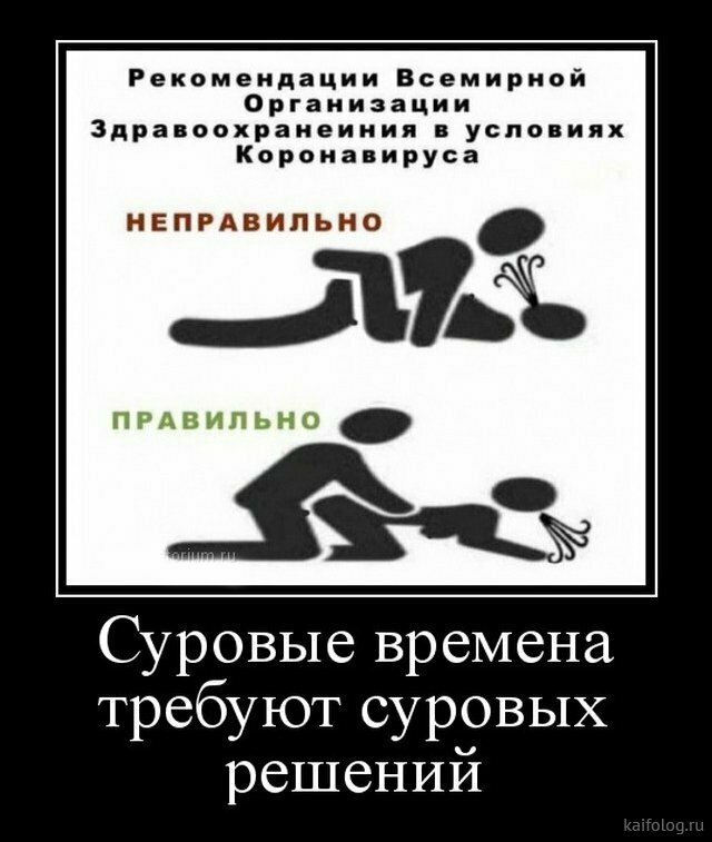 Источник изображения: Яндекс картинки