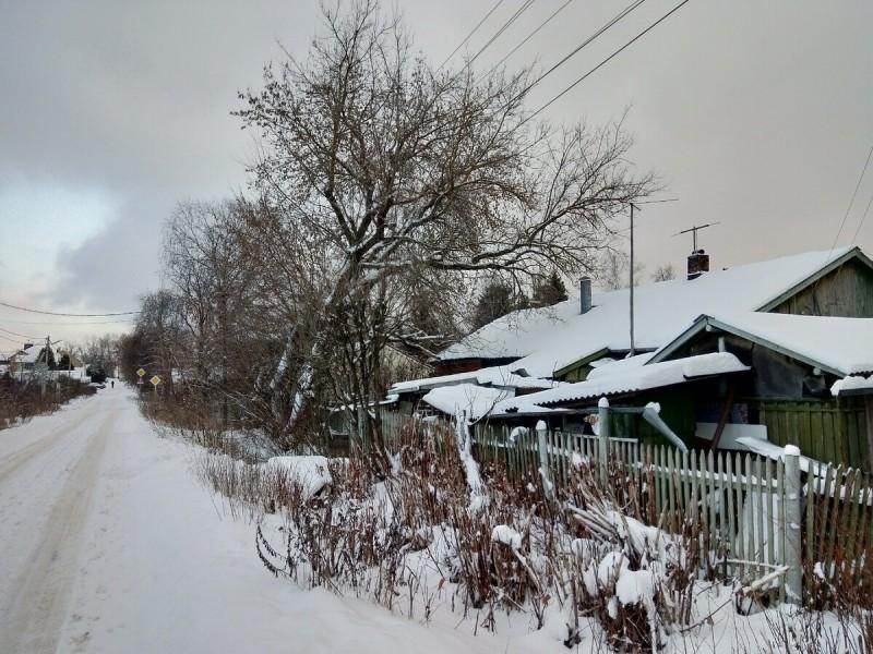 Фото автора. Зимняя сельская дорога...