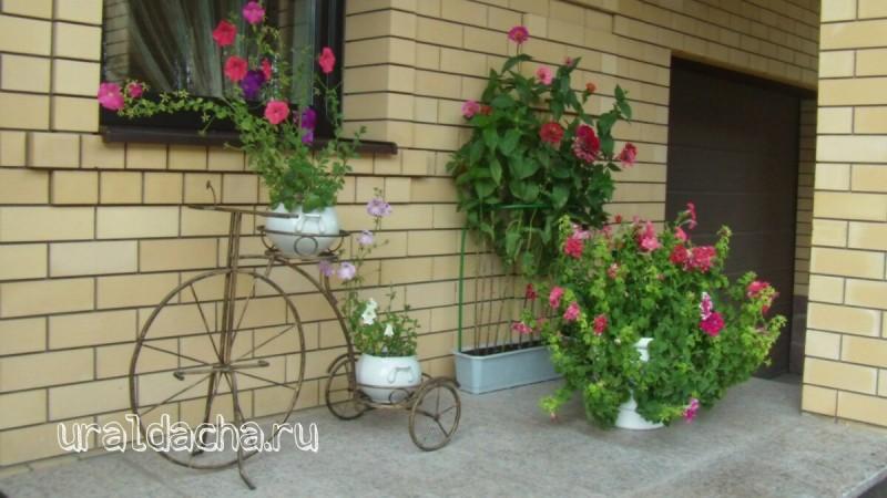 Красивый дом сад огород ландшафтный дизайн