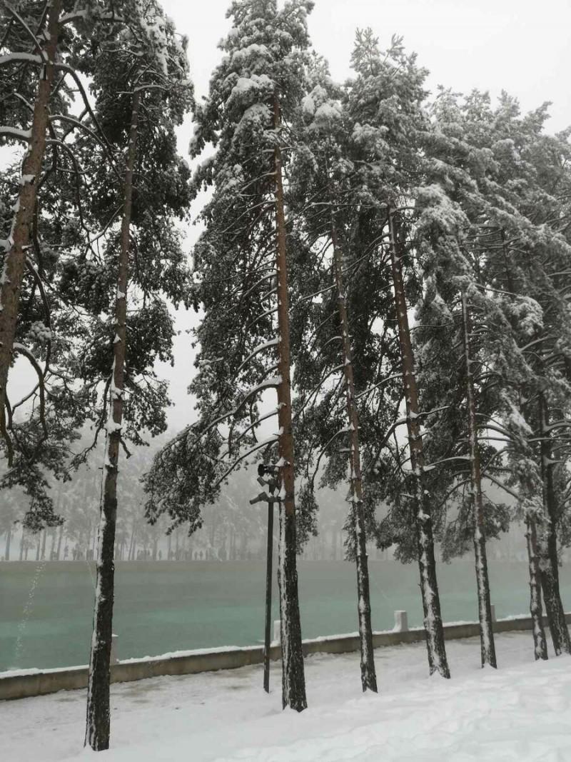 Оно же зимним днем