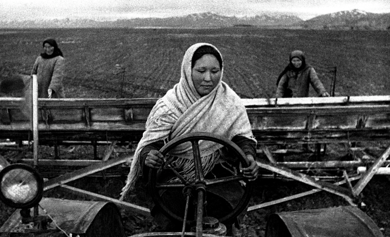 Женщины в тылу пашут поле.